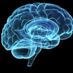 Šta je zajedničko ljudskom umu i gomili peska?