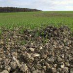 Zakonski okvir za eliminaciju malih seljaka