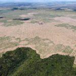 Krčenje amazonske prašume dostiglo najveću stopu u deceniji!